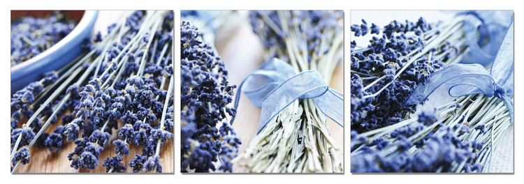 Lavender - Collage Mounted Art Print