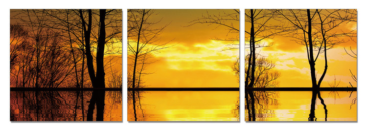 Tree Silhouettes - Calm Water Mounted Art Print