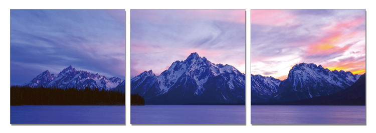 View of the Nature in Grand Teton Mounted Art Print