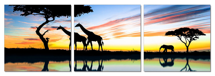 Wild Nature - Sunrise in Africa Mounted Art Print