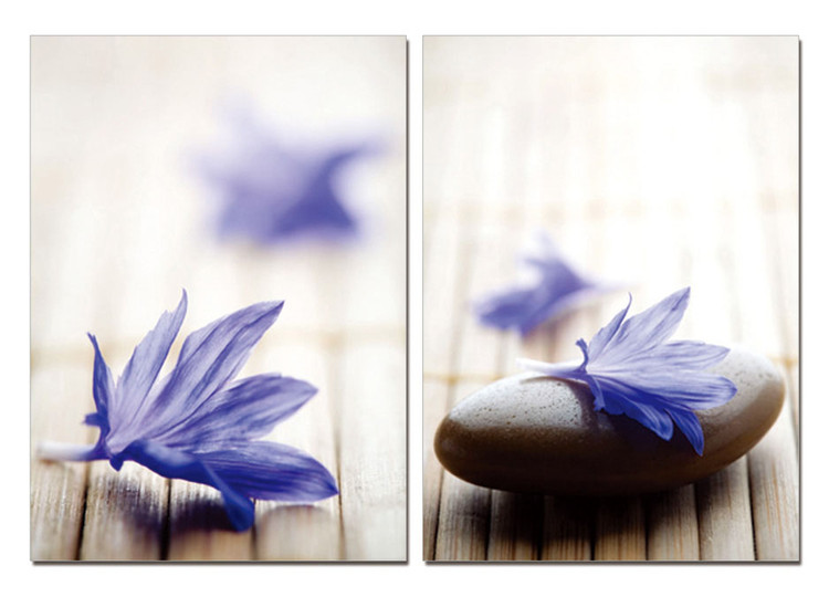 Zen - Blue Blossom Mounted Art Print