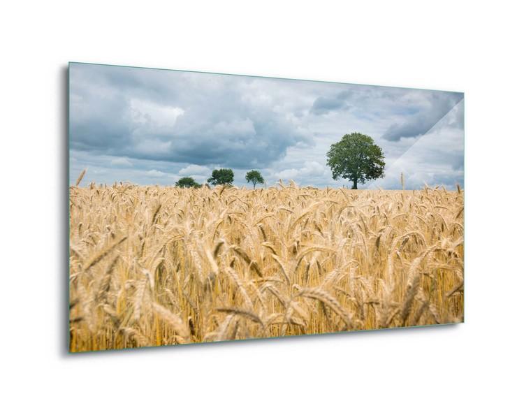 Quadro em vidro  Harvest Time