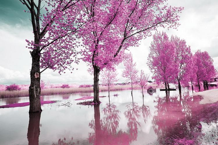 Quadro em vidro Pink World - Blossom Tree 1