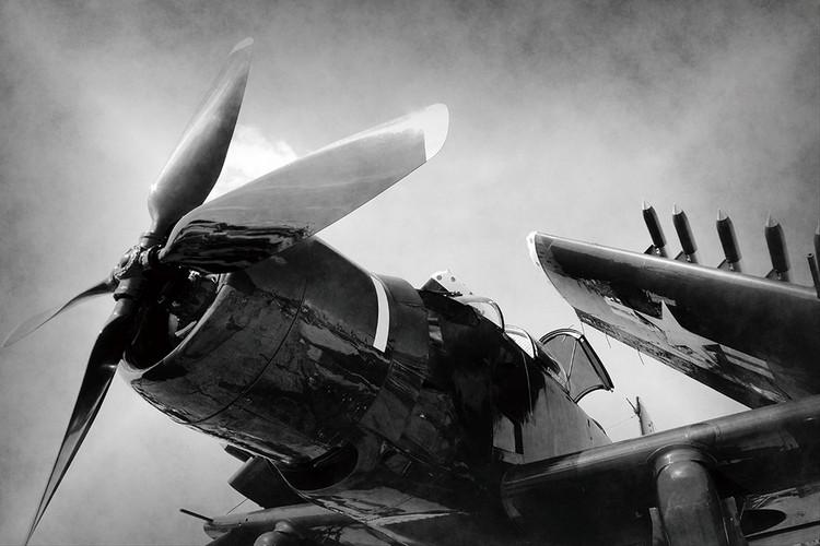 Quadro em vidro Plane - Black and White Screw