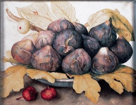 Reprodução do quadro A Plate of Figs, 1662