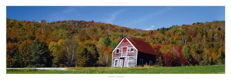 Reprodução do quadro Autumn Colours