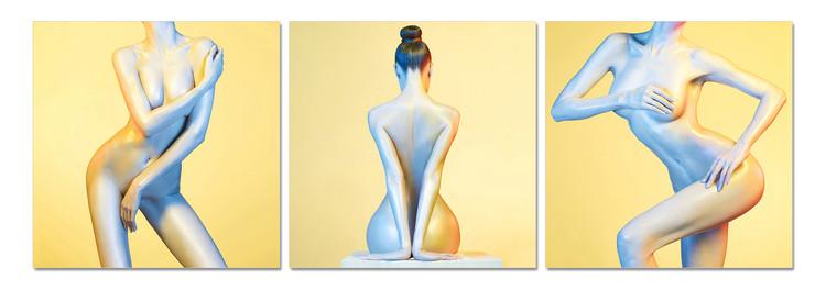 Quadro Body of a woman