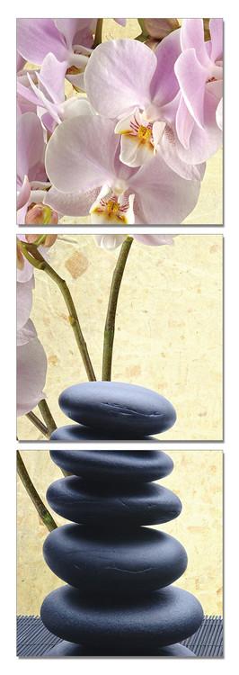 Quadro  Feng shui - the stones