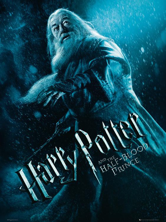 Reprodução do quadro Harry Potter and the Half-Blood Prince - Albus Dumbledore Action