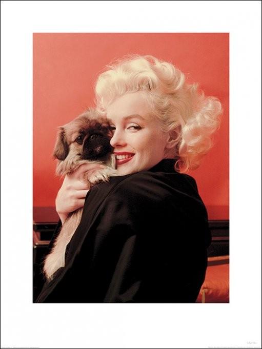 Marilyn Monroe - Love, Reprodução do quadro em Europosters.pt