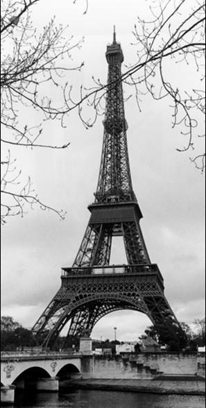Reprodução do quadro Paris - Eiffel tower