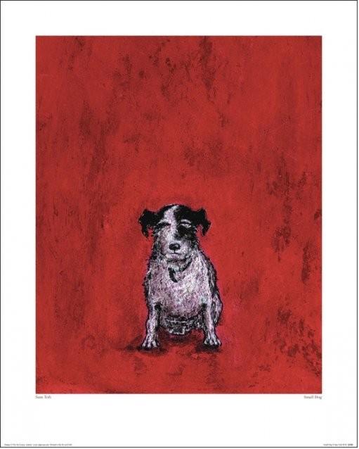Reprodução do quadro Sam Toft - Small Dog