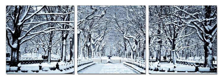 Quadro  Snowy park