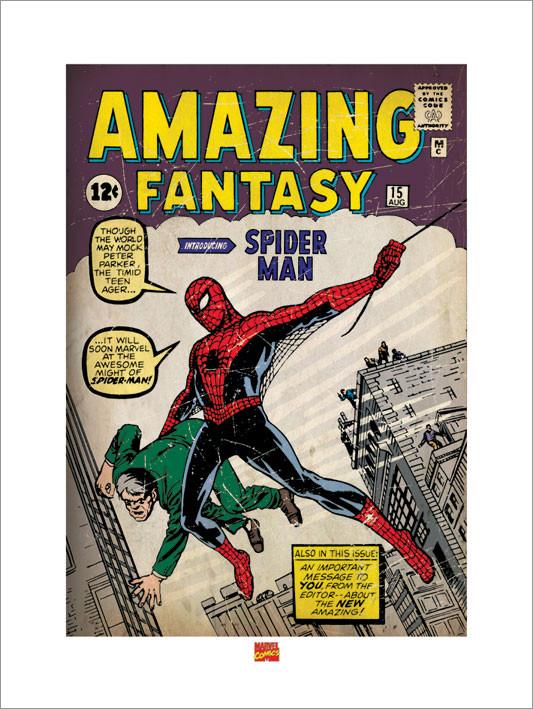 Reprodução do quadro Spider Man