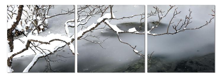 Quadro  Winter Snapshot
