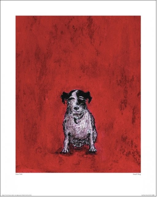 Sam Toft - Small Dog Reproduction d'art