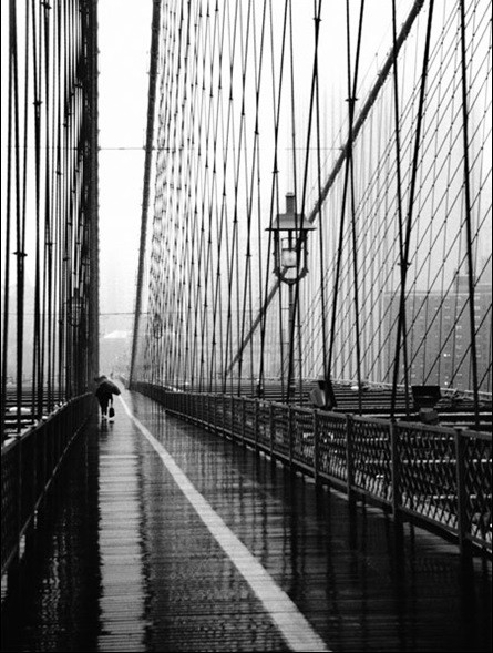 Brooklyn Bridge on rainning day  Taide