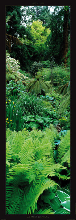 Garden of Eden Taide