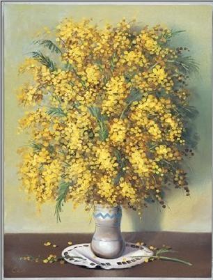 Mimosas Taide