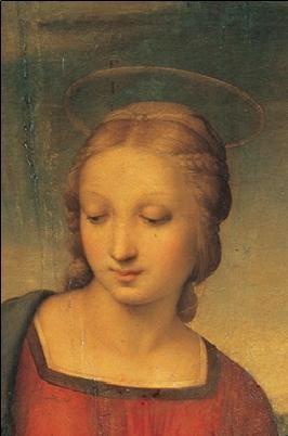 Raphael Sanzio - Madonna of the Goldfinch - Madonna del Cardellino Taide