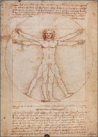 Vitruvian Man Taidejuliste