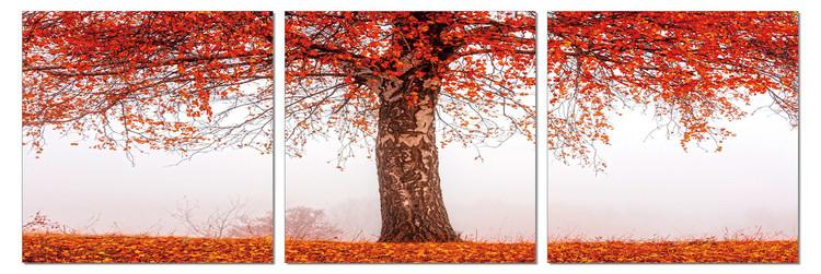 Alone tree in autumn Taulusarja