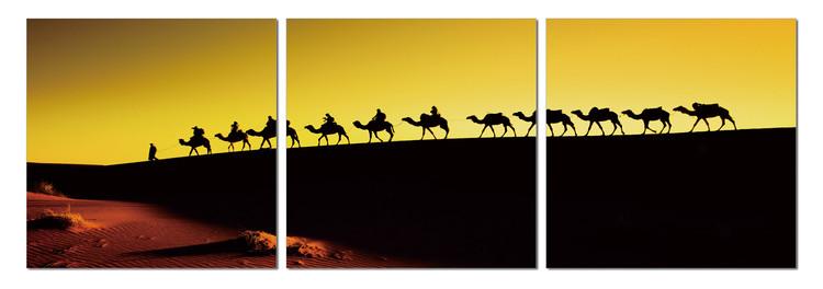 Camel caravan on the horizon Taulusarja