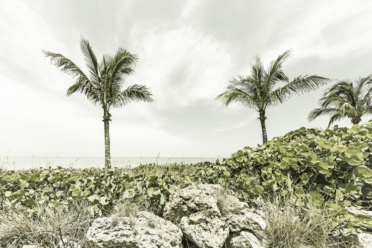 Valokuvatapetti Captiva Island   Vintage