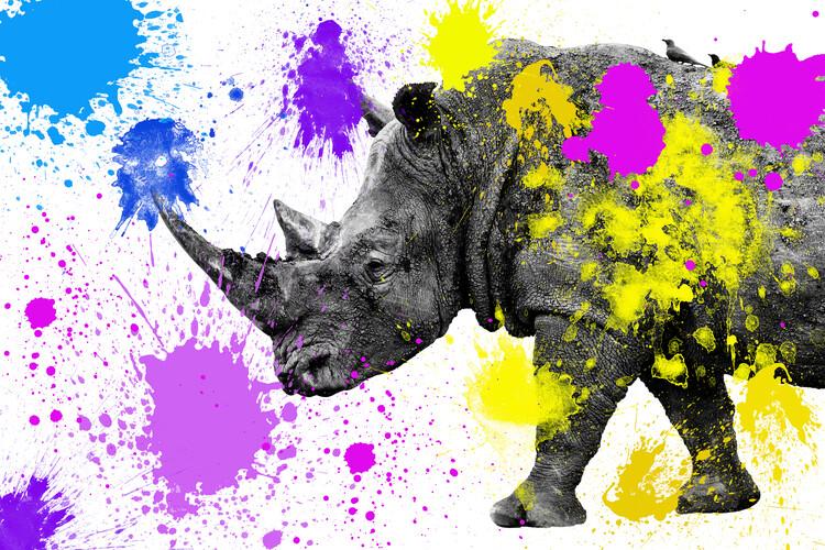 Valokuvatapetti Rhino