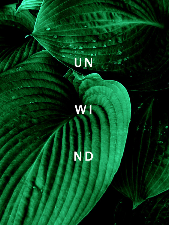 Valokuvatapetti Unwind