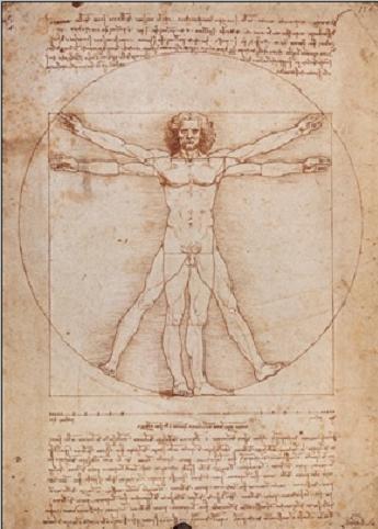 Vitruvian Man Reproduction d'art