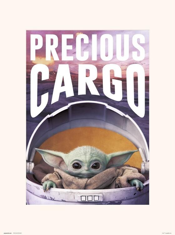 Star Wars: The Mandalorian - Precious Cargo Art Print