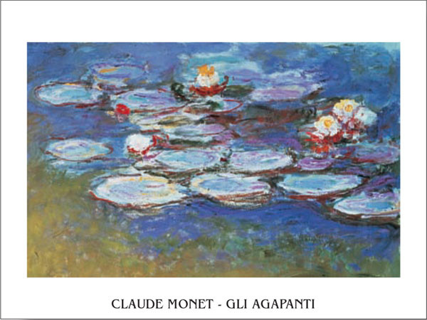 Water Lilies (Agapanthus) Art Print
