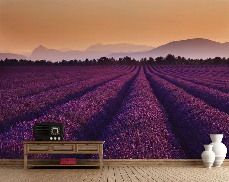 Lavande - Lavender Fields Poster Mural