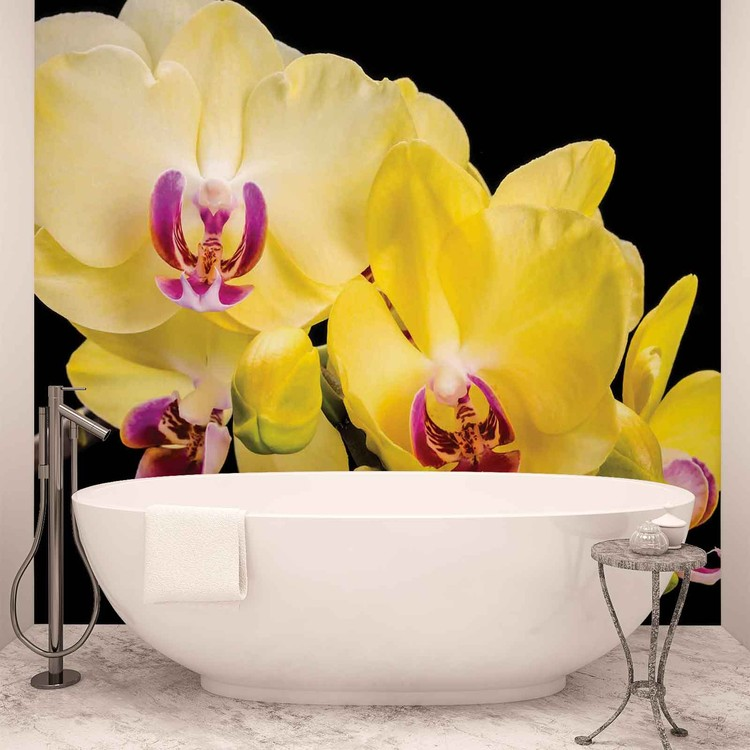 Orchid Flowers Poster Mural