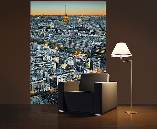 PARIS AERIEL VIEW Poster Mural