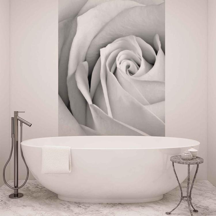 Une rose Poster Mural