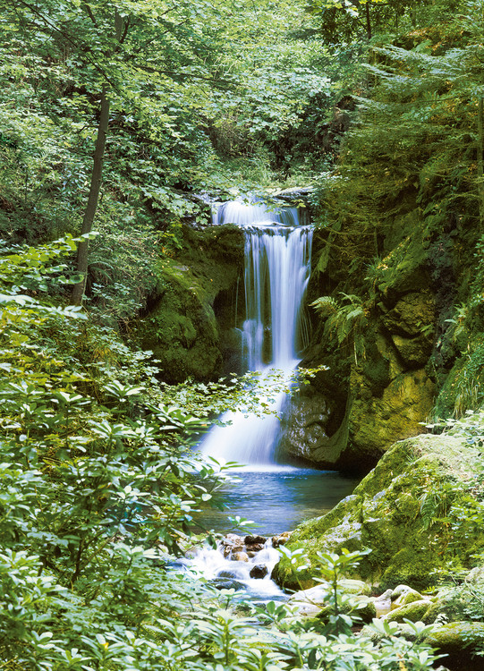 WATERFALL IN SPRING Poster Mural