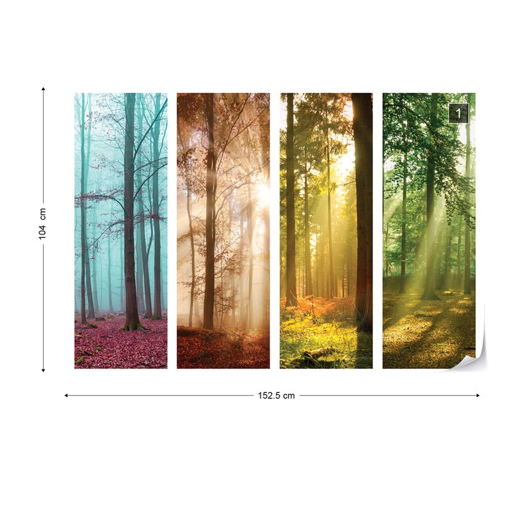 4 Seasons In The Forest Wallpaper Mural
