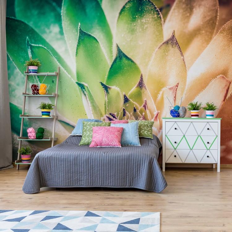 Aloe Plant Green And Orange Wallpaper Mural