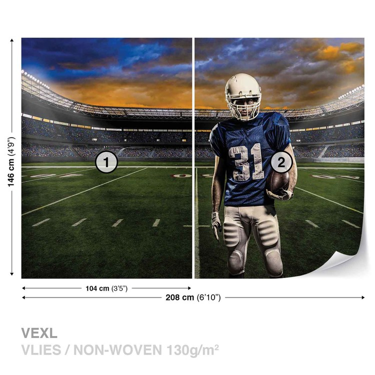 American Football Stadium Wallpaper Mural