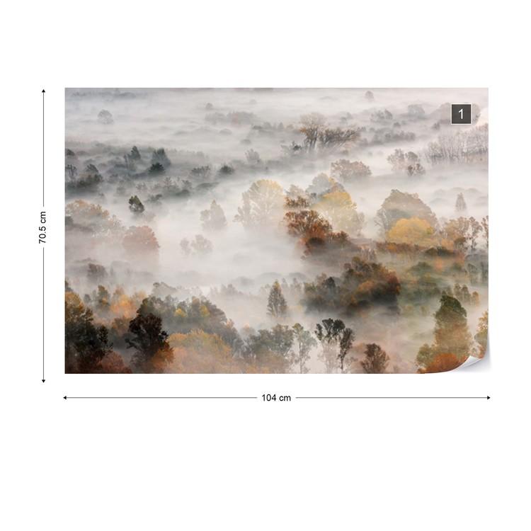 Autumn Colours In The Fog Wallpaper Mural