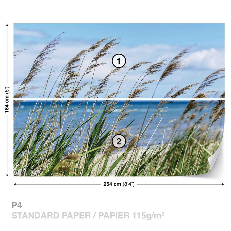 Beach Sea Sand Nature Wallpaper Mural