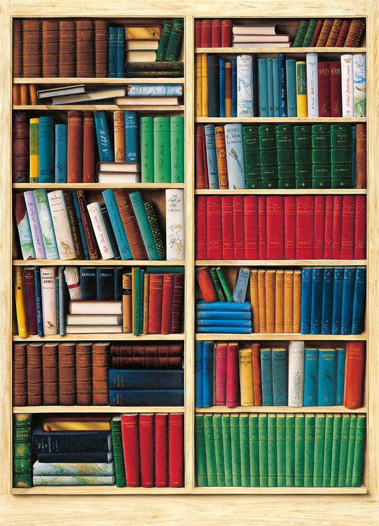 BIBLIOTHÉQUE Wallpaper Mural