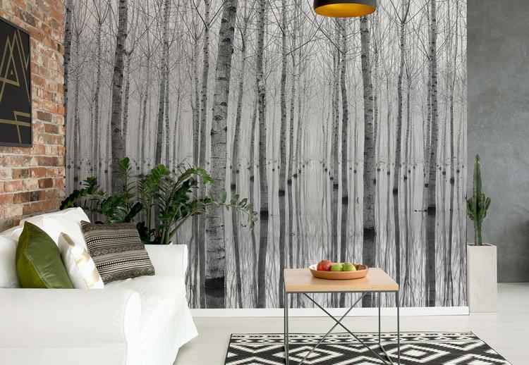 Birch Forest Wallpaper Mural