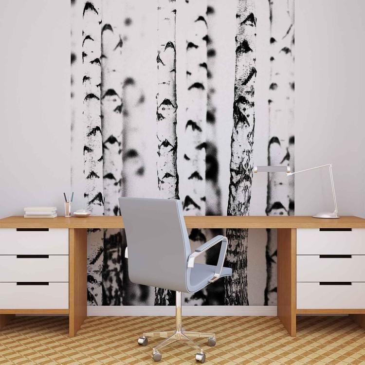 Birch Trees Wallpaper Mural