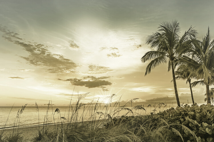 BONITA BEACH Sunset | Vintage Wallpaper Mural