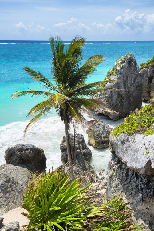 Caribbean Coastline Wallpaper Mural