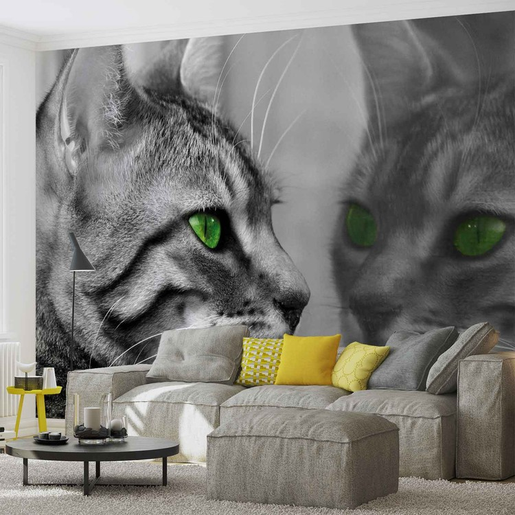 Cat Kitten Wallpaper Mural