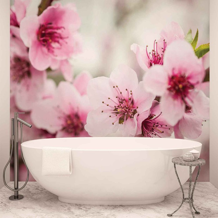 Cherry Blossom Flowers Wallpaper Mural